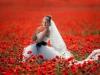 Выбор даты для свадьбы